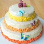 gâteau anniversaire vanille framboise youcookme